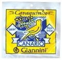 CORDA CANARIO CAVACO COM BOLINHA GESCB